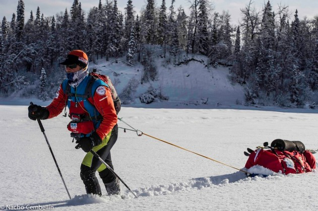 Iditarod alta-23